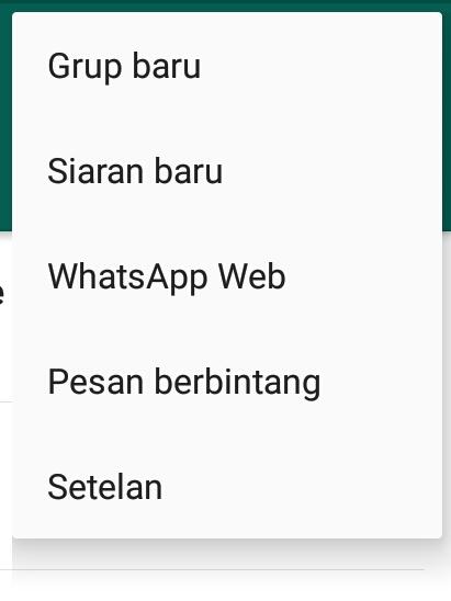 otomatis di aplikasi WhatsApp